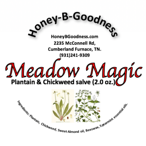 Meadow Magic Salve | Honey-B-Goodness | Handcrafted salves, soaps, skin care